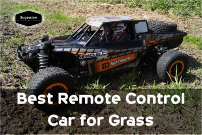 best-remote-control-car-for-grass
